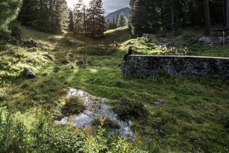 Alten Badesee mit frischem Wasser füllen