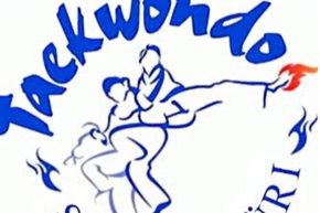Taekwondo Squad Züri