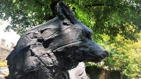 Adopte un loup