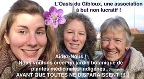 L'Oasis du Gibloux pour la sauvegarde des plantes médicinales Suisses