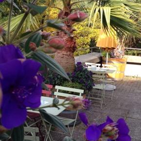 Café Fleuri im BOGA