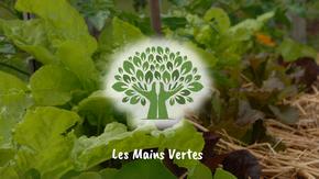 Jardin  d'insertion sociale Les Mains Vertes