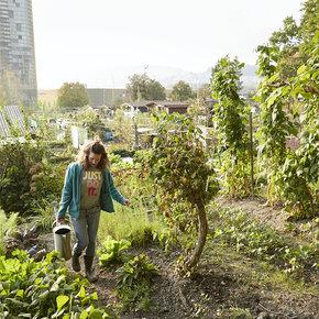 Verein «Gartenzwerg und Federkohl»