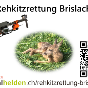 Rehkitzrettung Brislach