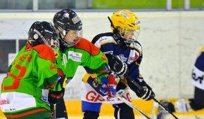 Matchleibchen für die Kids des HC Eisbären St. Gallen