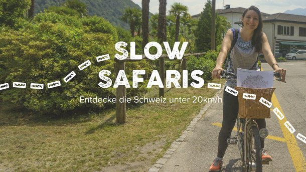 Slow Safaris