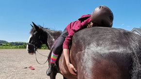 Pferdegestützte (Trauma-) Therapie ermöglichen
