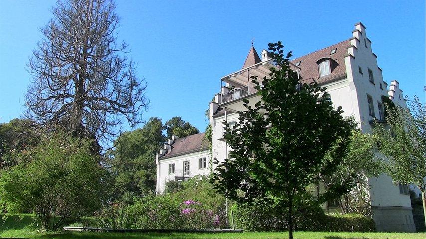 Lebensraum «Wildhecke» im Warteggpark Rorschacherberg