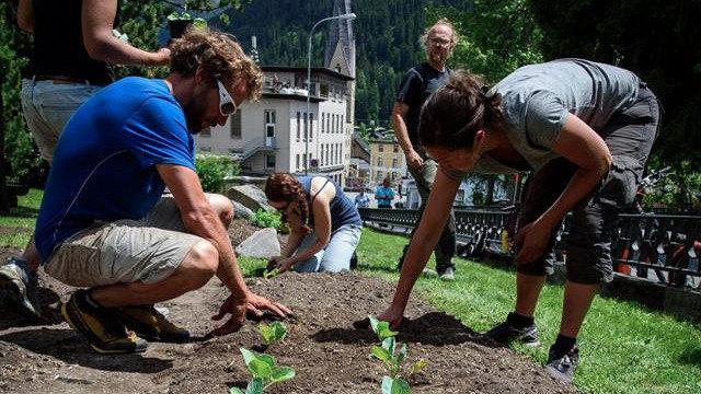 StadtGarten Davos