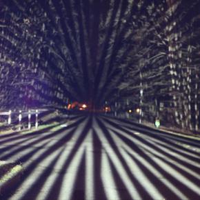Natur im neuem Licht - Aareschlucht Lichtkunst 2018