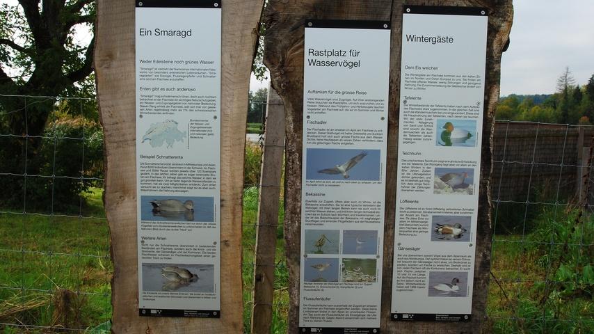 Aussensanierung und Dauerausstellung im Zieglerhaus Rottenschwil