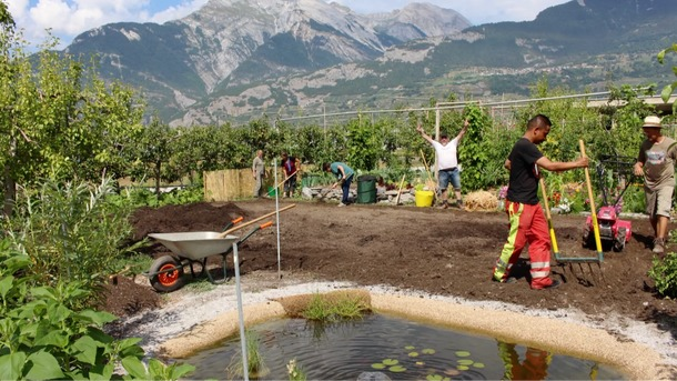 Les Mains Vertes: Jardin  d'insertion sociale