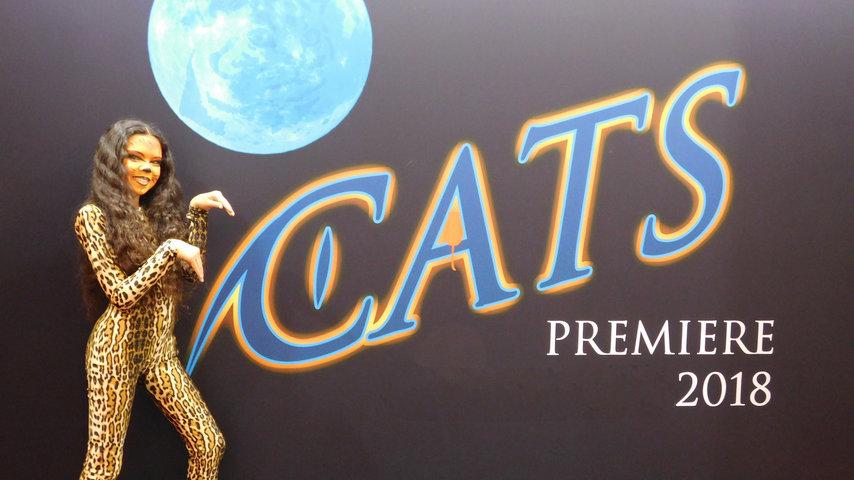 CATS das Originalmusical von Kindern gespielt