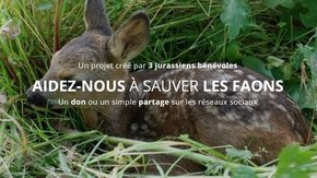 S.O.S sauvons les faons