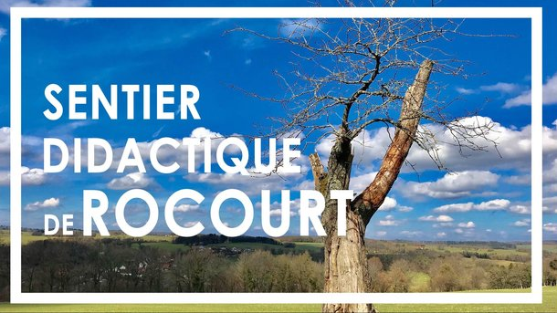 Sentier didactique de Rocourt