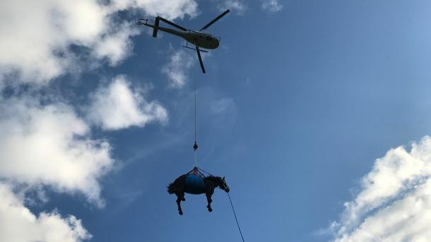 Reparatur Einsatzfahrzeuge des Grosstier- Rettungsdienstes