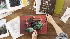 Buch: Flachs Sugo Tandem – Geschichten aus dem Schrebergarten